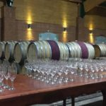 wine-tour-santiago